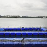 Sustainable aquaculture in Singapore